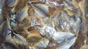 продажи: мороженной рыбопродукцией,  торговля  сушено-вяленными