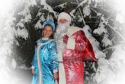 Дед Мороз и Снегурочка домой