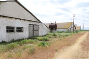 АРЕНДА / ПРОДАЖА  готовый бизнес - Свиноводческая  товарная ферма.