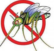 Уничтожение комаров и садовых вредителей