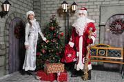 Дед Мороз и Снегурочка к Вам домой (Саратов,  Энгельс)